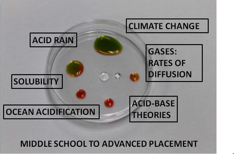 Petri dish thumbnail