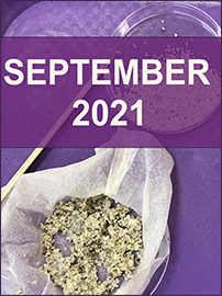 Sept 2021 cover opt3f